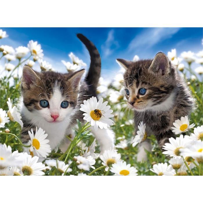 Ravensburger Sevimli Kedicikler - Süper 100 Parçalı