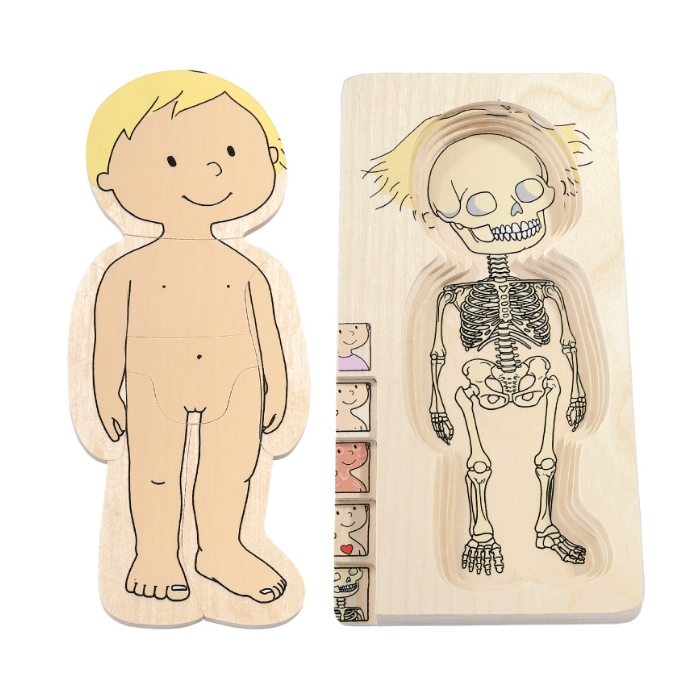 Beleduc İnsan Anatomisi Puzzle - Kız