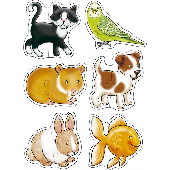 Orchard Ev Hayvanları (Pets)