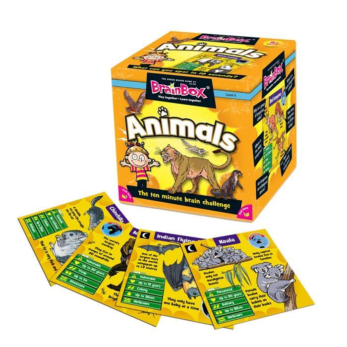 BrainBox Hayvanlar (Animals) (İngilizce)