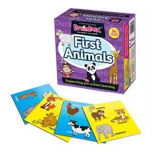 BrainBox İlk Hayvanlarım (First Animals) (İngilizce)