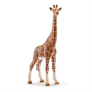 Schleich 14750 Dişi Zürafa